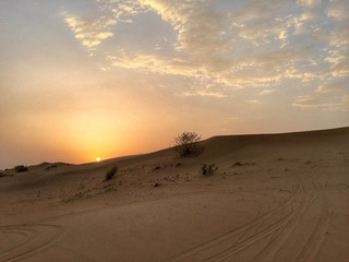 dämmerung in wüste