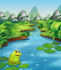 River scene with frog on leaf