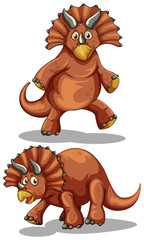 Brown rubeosaurus in two different poses