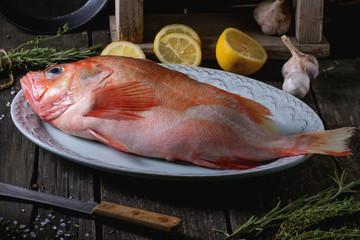 Raw grouper