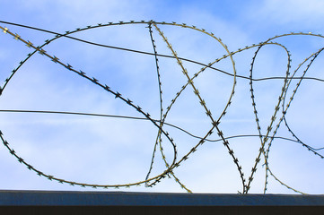 spiral barbed wire. a high fence of barbed wire spiral against the blue sky