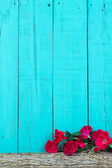 Rose covered log with rustic teal blue background