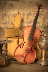 violin - still life