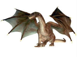 Angry Dragon - The dragon is a legendary creature with reptilian traits and wings featured in myths in many cultures.