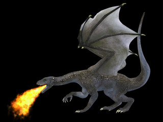 Fire Breathing Dragon - A fierce dragon with huge teeth and claws breathes fire as a weapon as he rises with outspread wings.