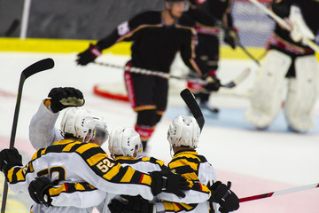 Ice Hockey Players Celebrating