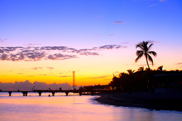 Colorful sunset in Key West Florida with palm trees silhouettes