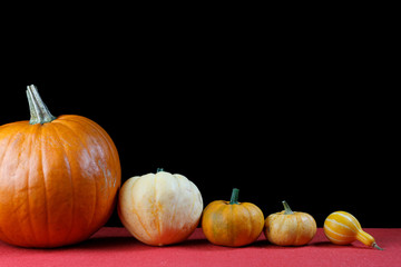 Several pumpkins in a line