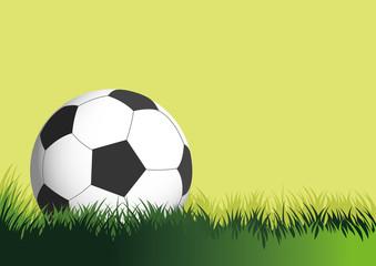 FOOTBALL OR SOCCER BALL