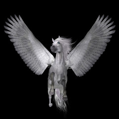 White Pegasus on Black - Pegasus is a legendary divine winged stallion and is the best known creature of Greek mythology.