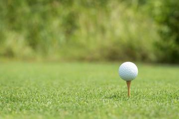 Golf ball on a wooden tee