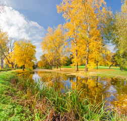 Autumn landscape with the river in the park