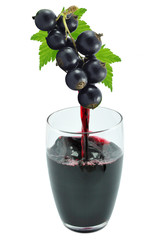 blackcurrant juice in a glass isolated on a white background