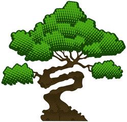 Bonsai tree, vector illustration.