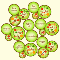 Vegetarian types infographic. Variety diets. Raw vegan, ovo vegetarian, lacto-ovo vegetarian, pescatarian (pescetarian), lacto vegetarian, vegan. Vector color illustration
