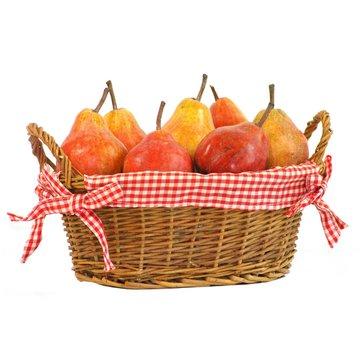 cueillette de poires