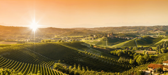 Wall Mural - Panoramic view of the Langhe vineyards and hills
