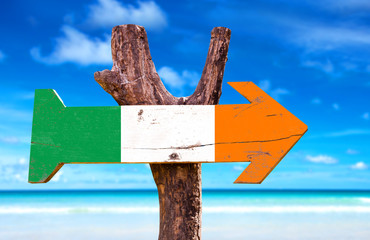 Ireland flag wooden sign with ocean background