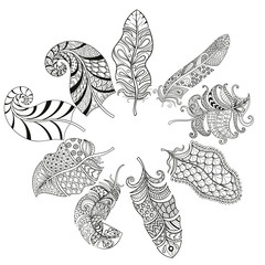 Zentangle stylized various feathers for coloring page. Hand draw