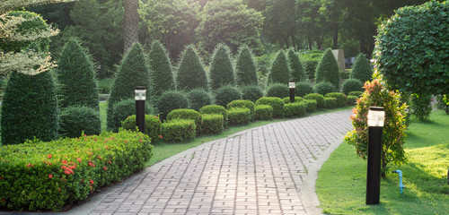 Many tree and Stone pathway into garden in the evening time.