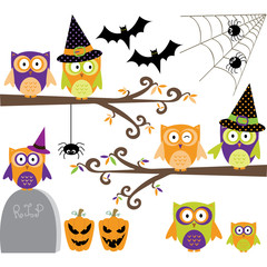 Happy Halloween Owls collections