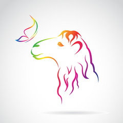Vector image of camel and butterfly on white background