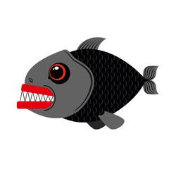 Piranha marine predator on white background.Terrible sea fish wi
