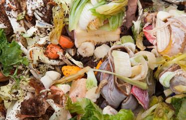 Organic waste in trash can