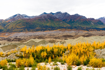 Kennicott Sediment Glacier Wrangell St Elias Mountains Autumn Co