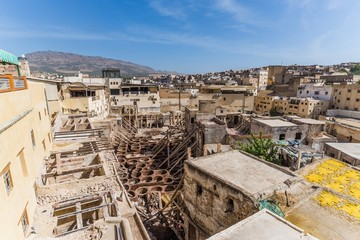visiting the famous tanneries of fes