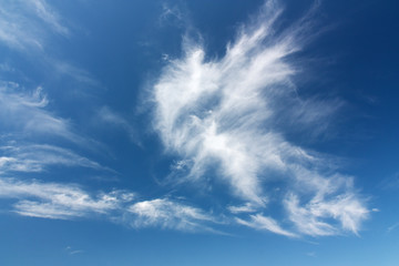 Federwolken am blauen Himmel