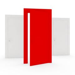 unique red door