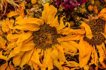 Closeup on dried sunflower petals.