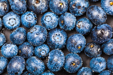 blueberries with drops close-up