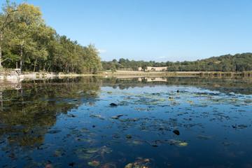 Reflets étang plateau de Crémieu, isère