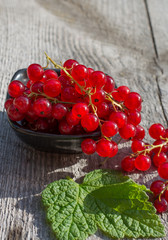 red currant on plate