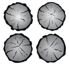 Set of four tree rings icons.