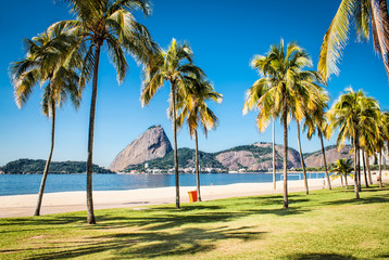 Botafogo beach and Sugarloaf  mountain,n Rio de Janeiro, Brazil Wall mural