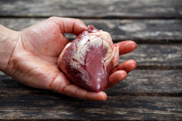 Man hand holds lamb heart
