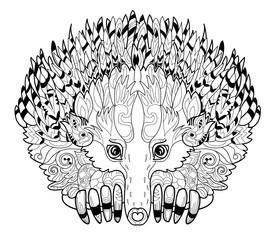 Hand drawn animal  Echidna.