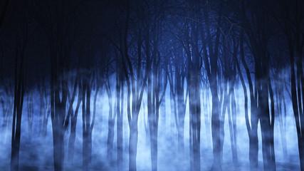 Fototapete - 3D foggy forest