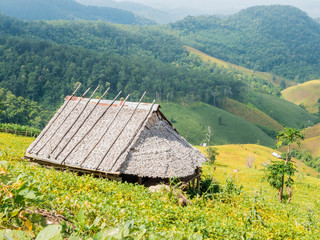 The country bamboo hut
