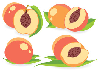 Peach vector illustrations set