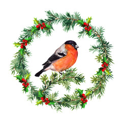 Spruce wreath - fir, mistletoe and bullfinch. Watercolor