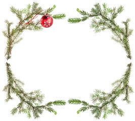 spruce tree branches with red ball on white