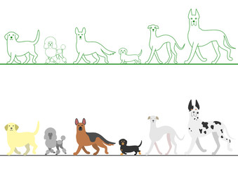 set of various dogs walking in line