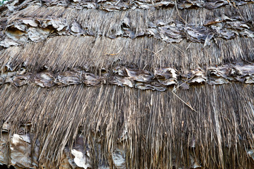 The tracery traditional Karen roof made mix from grass and leaves