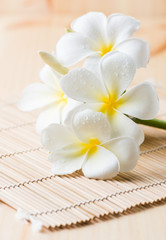white Plumeria on wood bamboo mat.