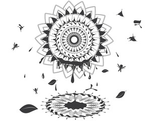 abstract vector sunflower/black and white