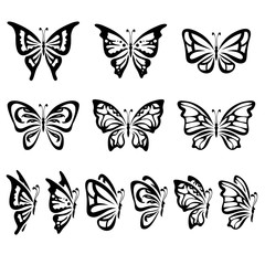 Collection of different butterflies isolated on white, vector illustration